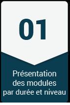 module-FM-1.png